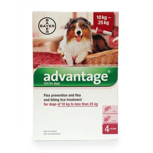 Image of Advantage Flea Prevention and Treatment Solution for Dogs of 10 kg to less than 25kg - 4 x 2.5ml.